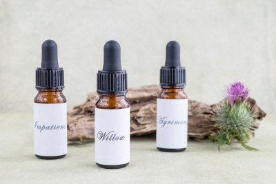 Bach-Blüten-Therapie: Alternative zur Medizin?
