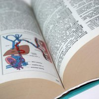 Heilverfahren: Anwendung zur äußerlichen oder inneren Therapie